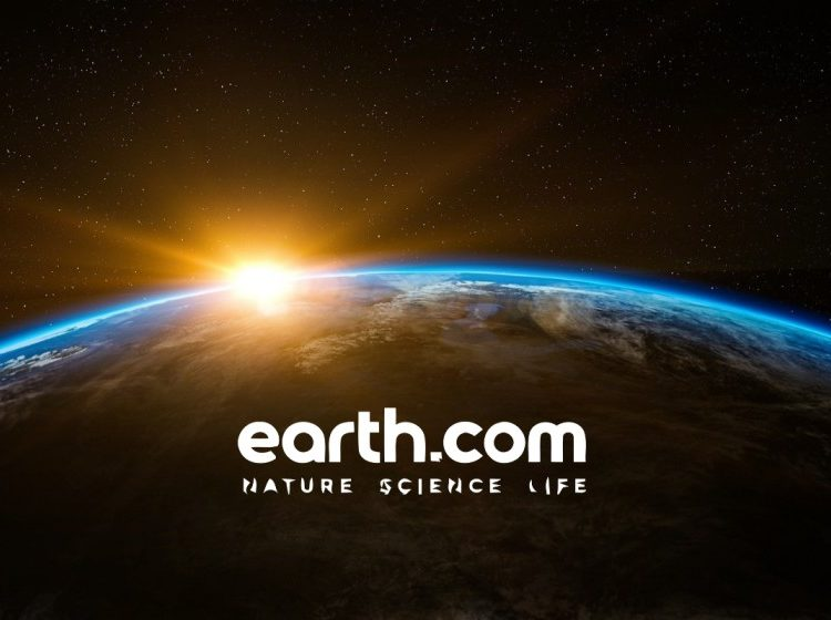 Earth.com is a website that aggregates everything you need to know about our planet.